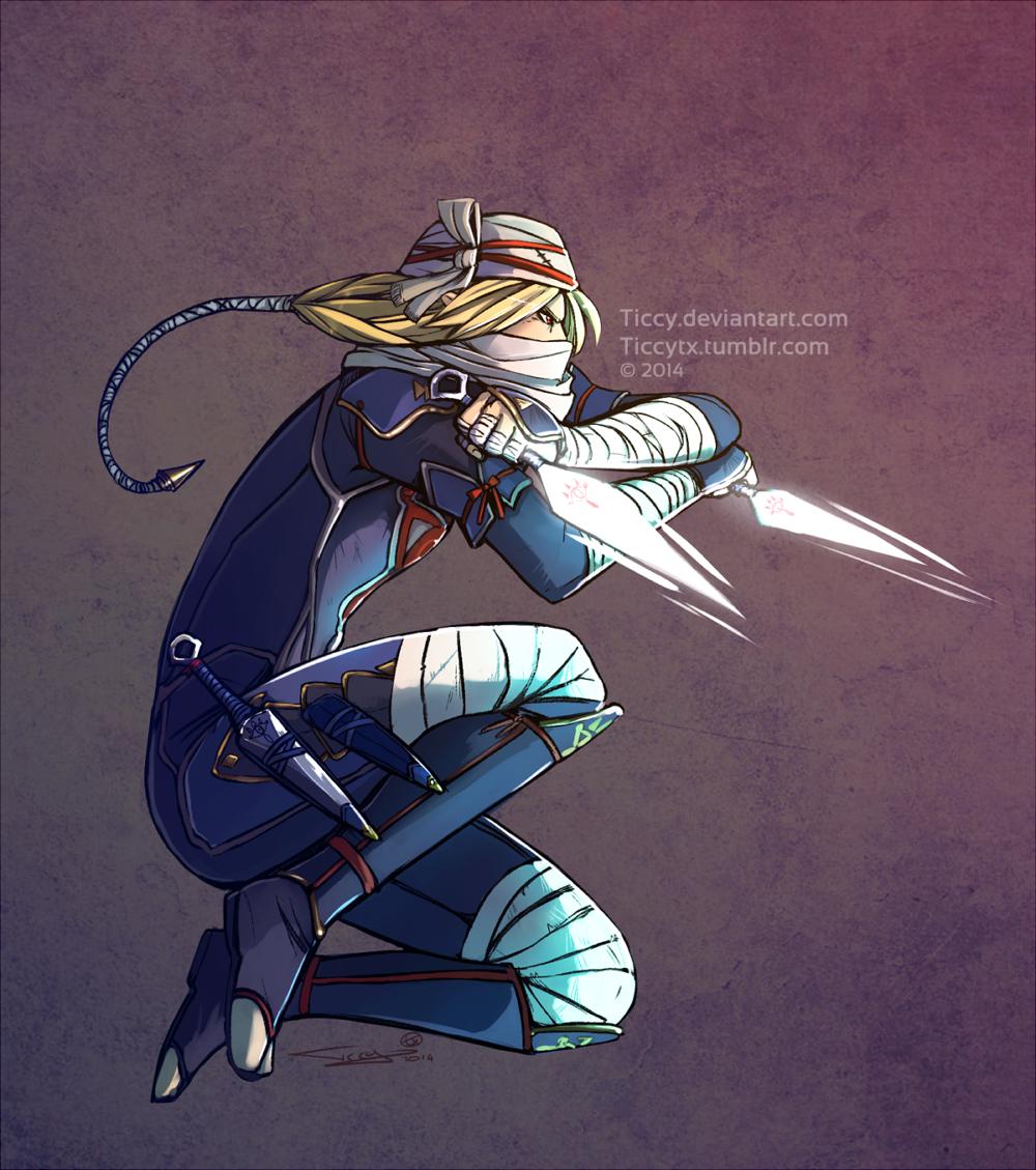 Sheik Hyrule Warriors by Ticcy