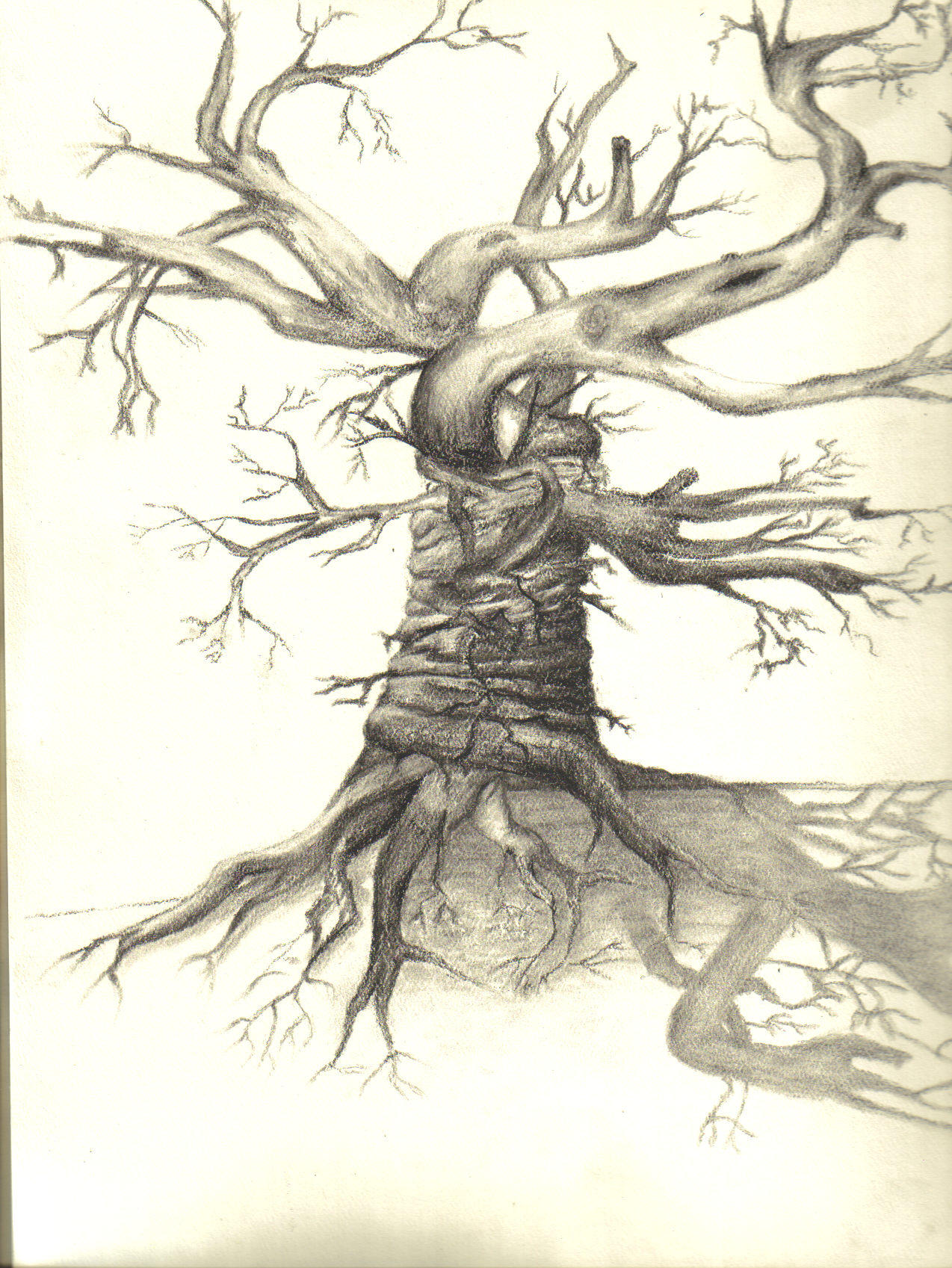 scary tree by 6shotgun6serenade6 on deviantart