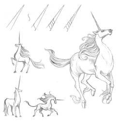 Day 16: Unicorn by impactbooks