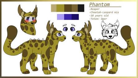 Phantom reference sheet