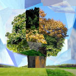 Collage: Tree
