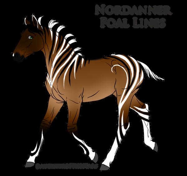 Nordanner Foal Design By Ikiuni On DeviantArt