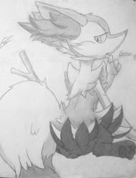 Pokemon: BRAIXEN by Bass-Senpai