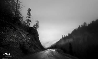 Drive to escape by DragonDriver5