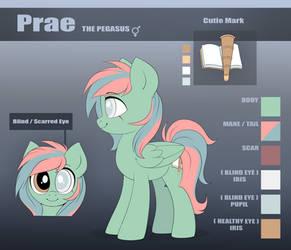Ref Sheet: Prae by RavenSunArt