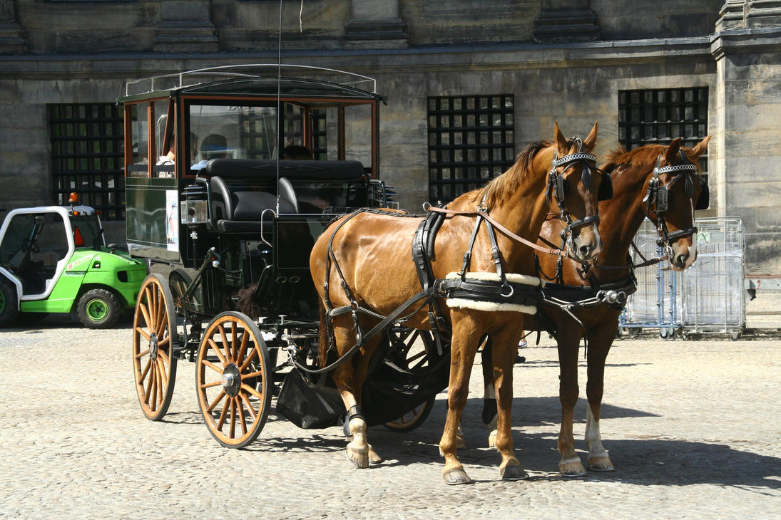 Horse carriage stock 01 by DameTenebra