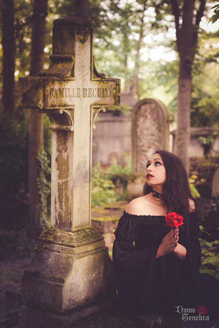 The truth beneath the rose by DameTenebra