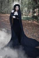 Black Widow by DameTenebra