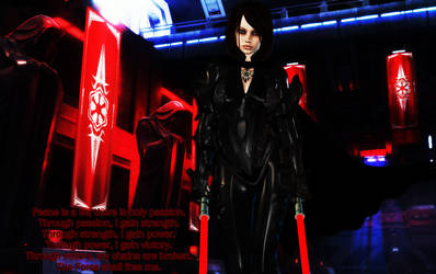 Sith Warrior by Ryari