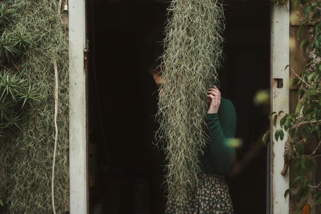 Greenhouse by pocketXsizedXchica