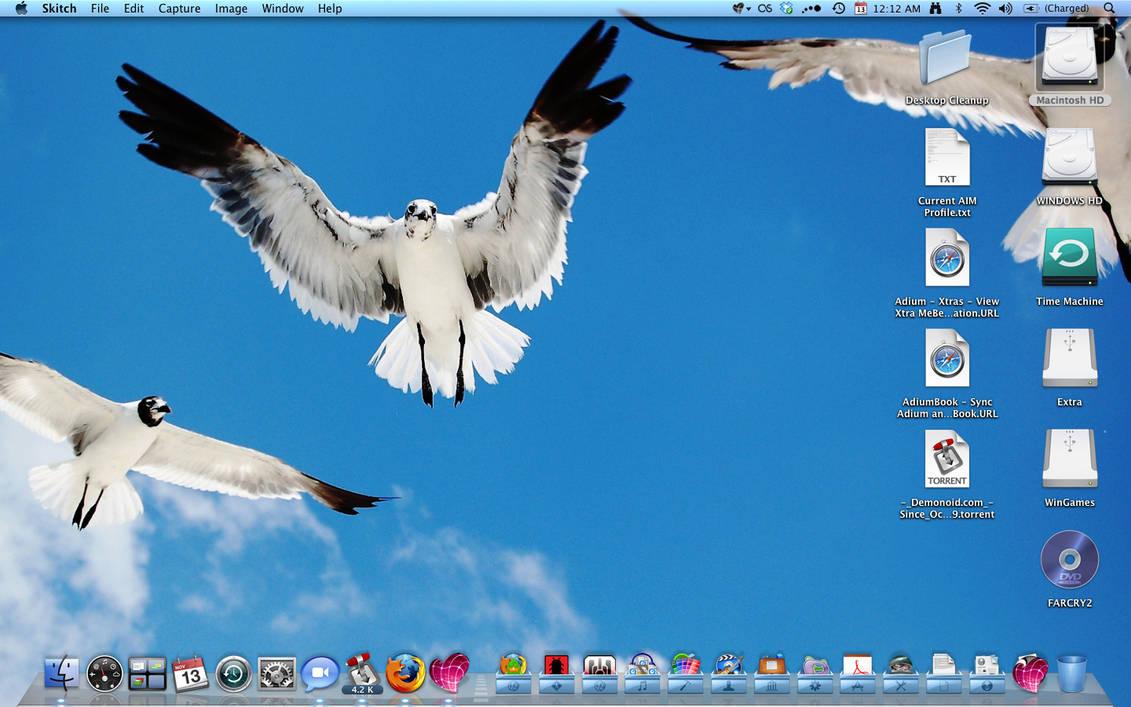 My Desktop - Nov 13, 2008