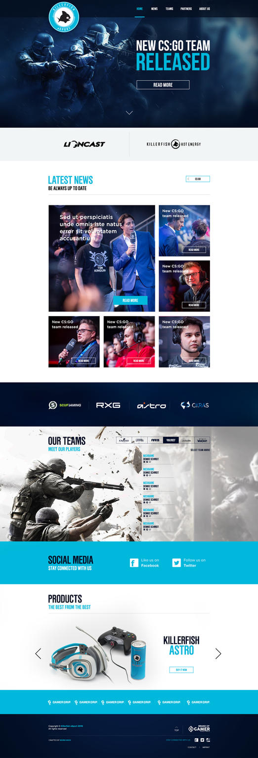 KILLERFISH eSport Web Design 2016 by BorisWick
