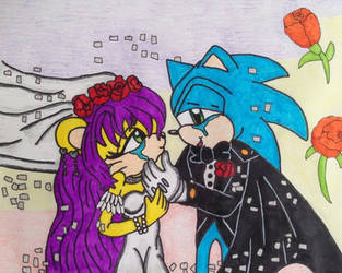 Sonic and Mina wedding by dragonpriness
