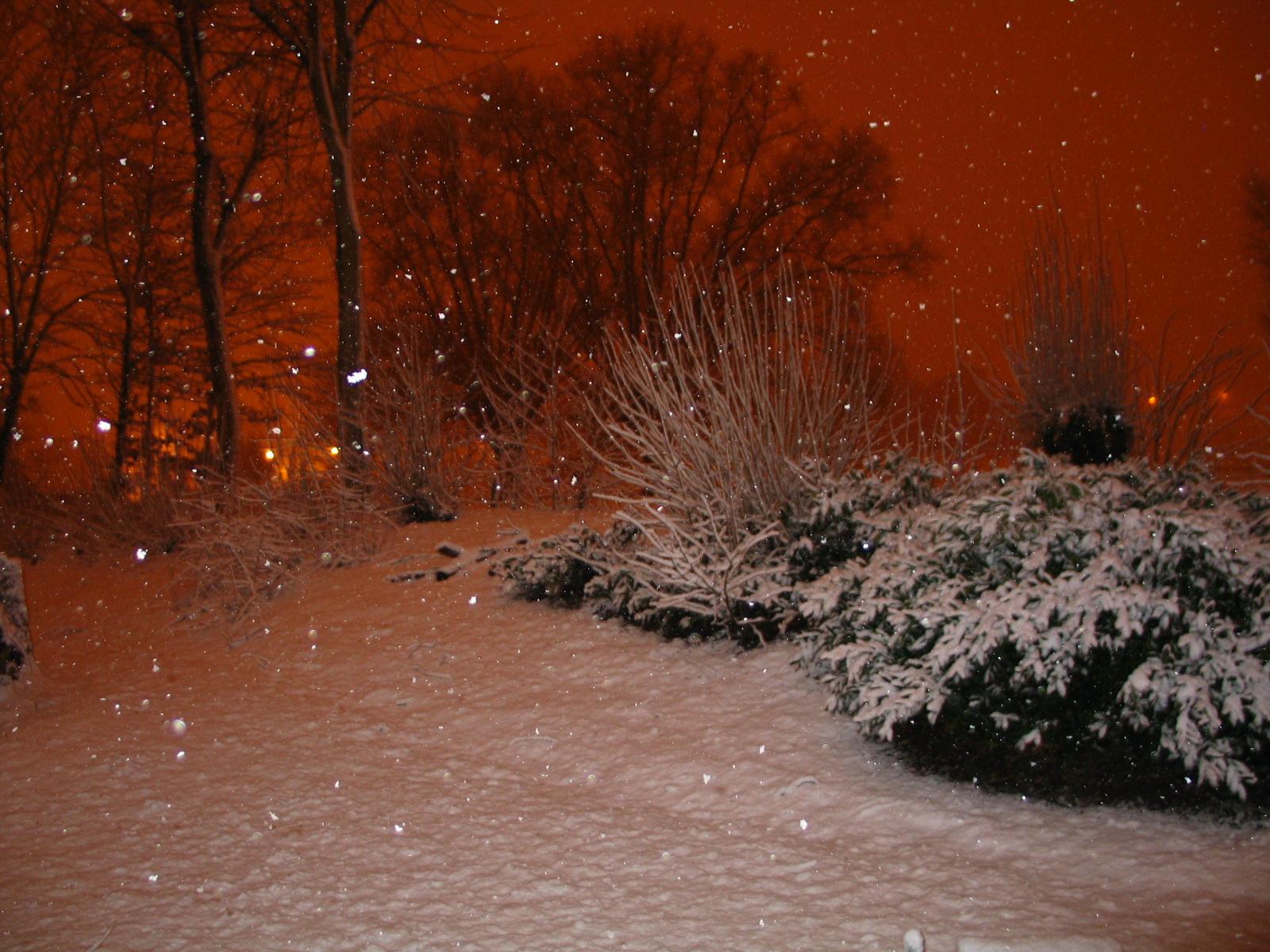 Red Snow - IMDb