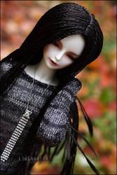 Rokai's autumn I by LisenaKira