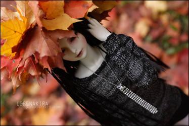 Rokai's autumn II by LisenaKira