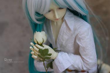 Remy by LisenaKira