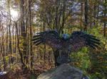 Stoney Bird