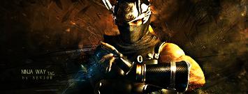 Ninja Gaiden by Seviorpl