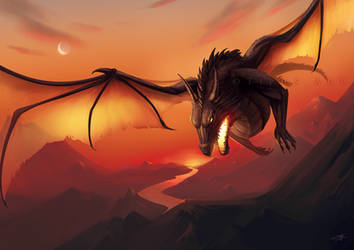 Sunrise dragon by Tiphs