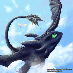 Toothless and the Light Fury