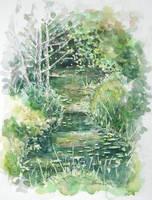 Summer river sketch