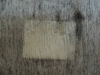 Raw Series: Wood 1 by ElonMuskUnderground