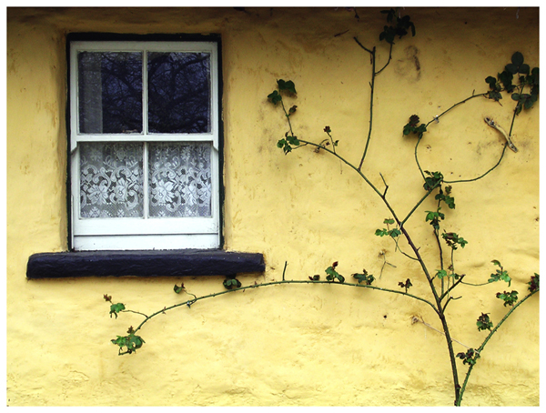 Prozori koji govore - Page 2 Window_in_Ireland_by_ShoWatanabe