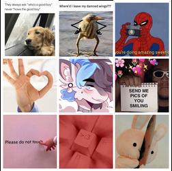Meme Prompt - GYO