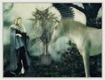 Avalon by Nexus-Of-Dreams