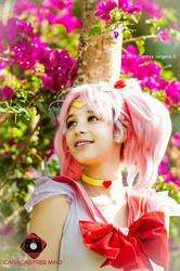 I'm a Sailor Scout by janakraehe