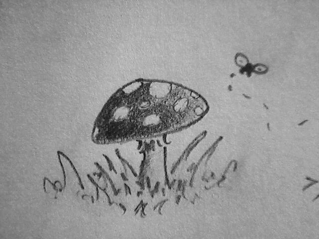 Mushroom by ArtisOneofThem