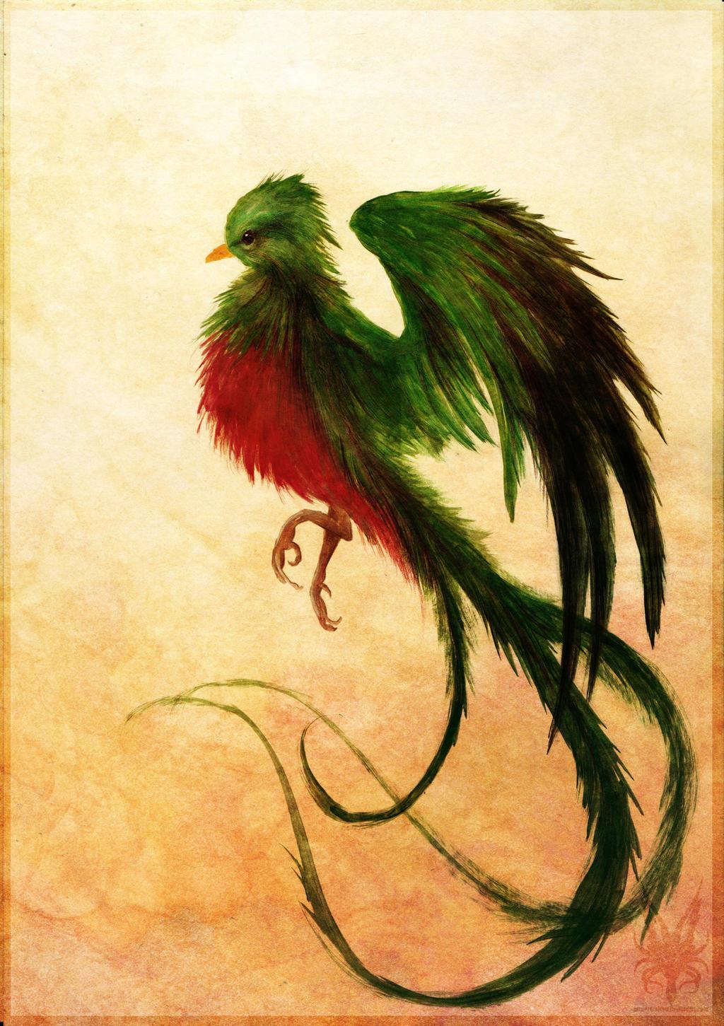 Resplendent Design From Katarzyna Kraszewska: Quetzal By Lyswen On DeviantArt