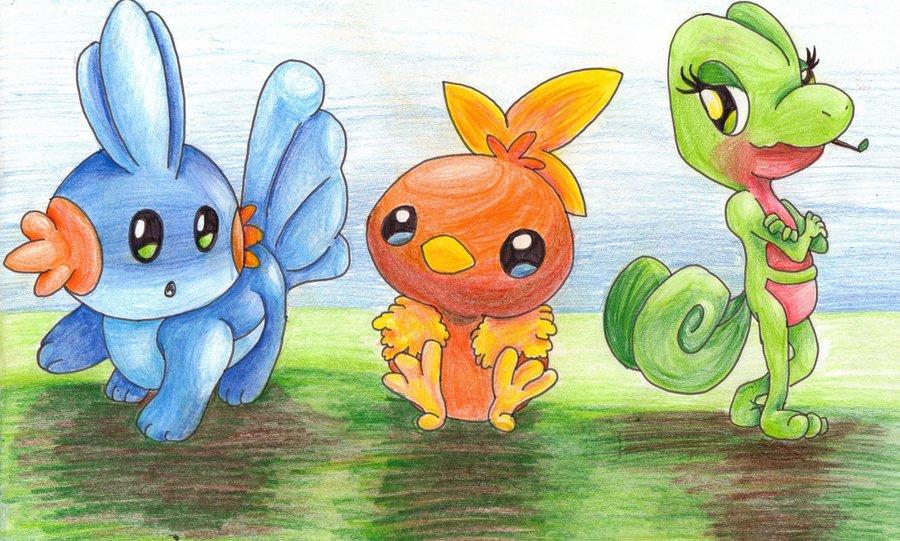 Hoenn Starter Pokémon  Pokémon Wiki  FANDOM powered by Wikia