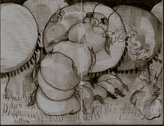 gusano de seda by nesior
