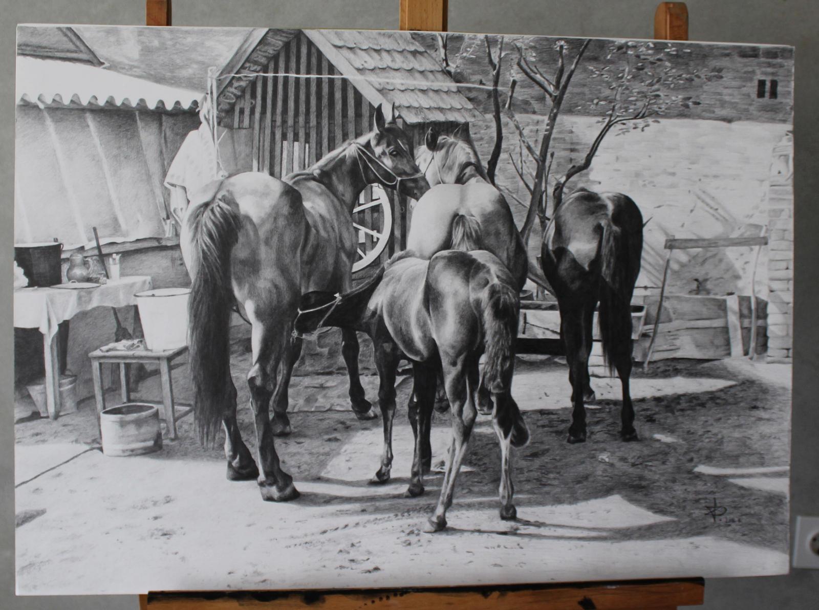 horses in old backyard by rahelak on deviantart