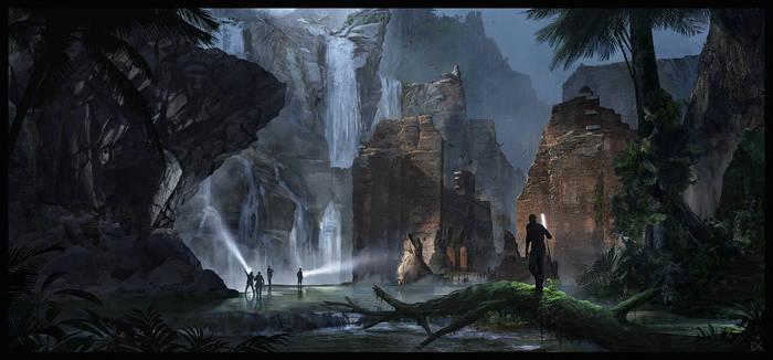Jungle discovery