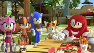 Knuck Knuck Who's Here - Team Sonic