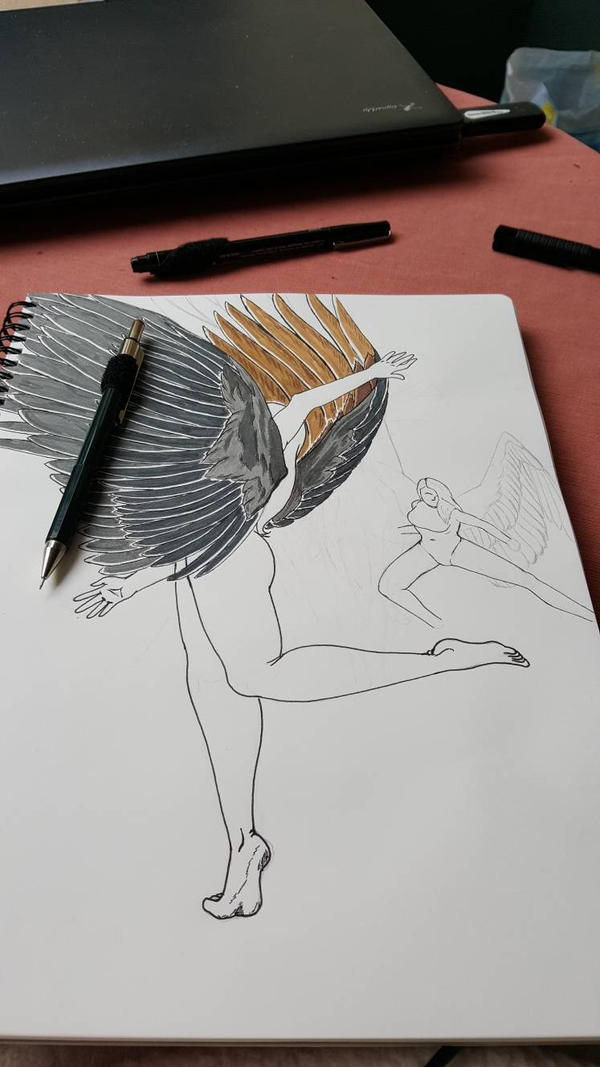 Study on winged humans (girls) by GreyCore
