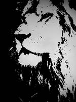 Lion by svecovarena