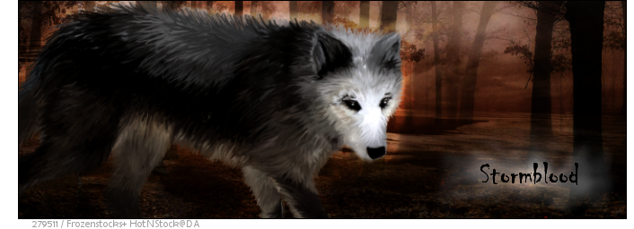 Stormblood Banner 2