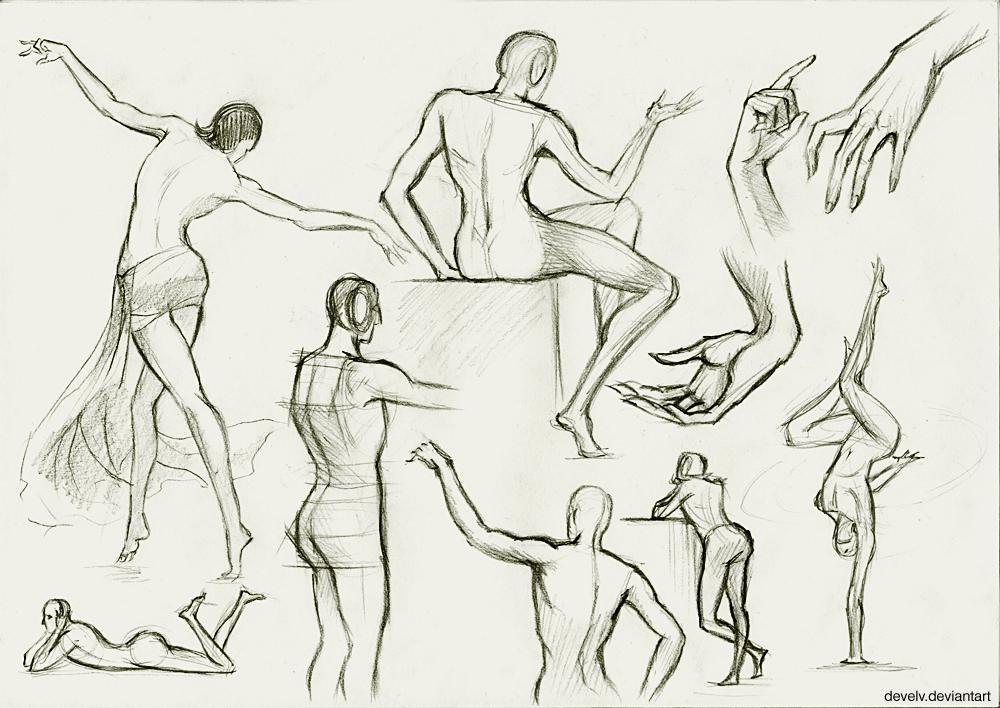 Anatomy study by Develv on DeviantArt