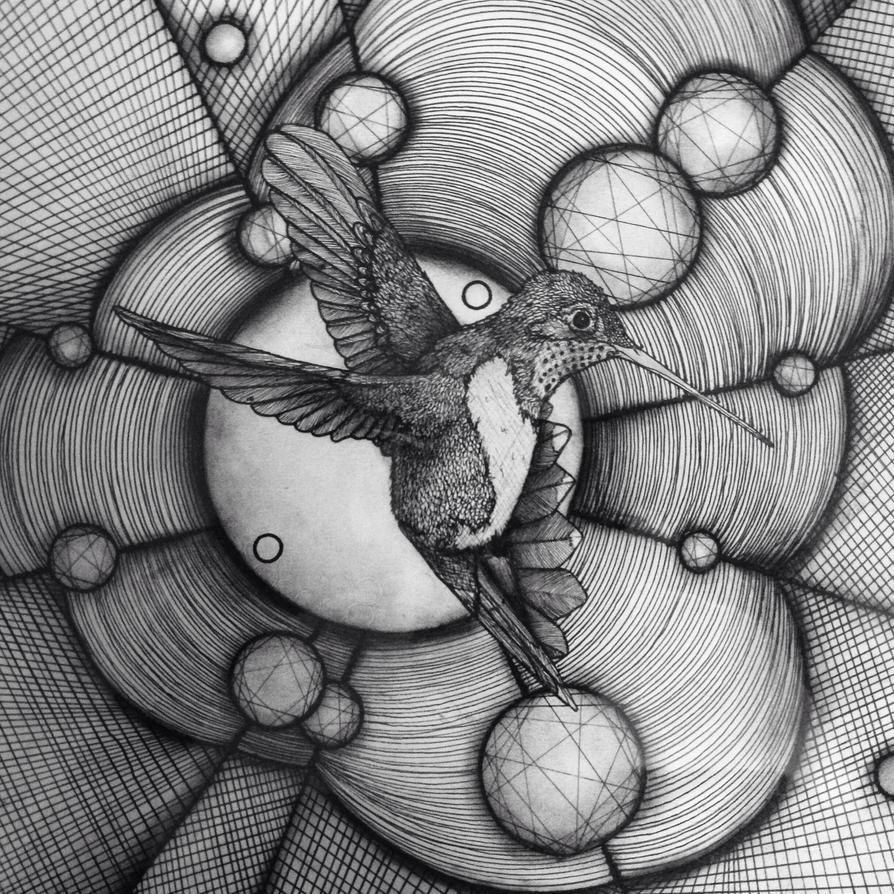 Hummingbird by dustingire