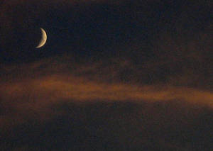 Moon and Mist