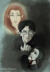 HP DH spoiler: His Eyes by Vimeddiee