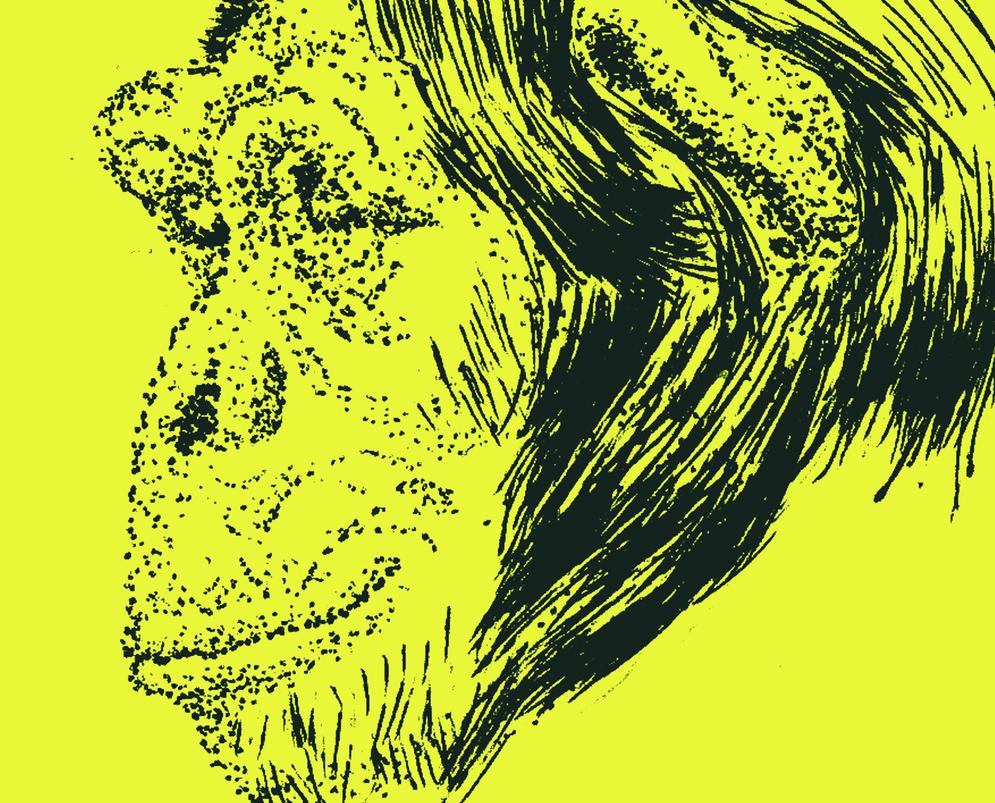 Stipple Chimp by EhhWint