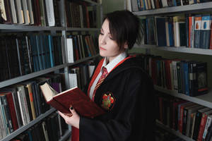 Harry Potter - Gryffindors student