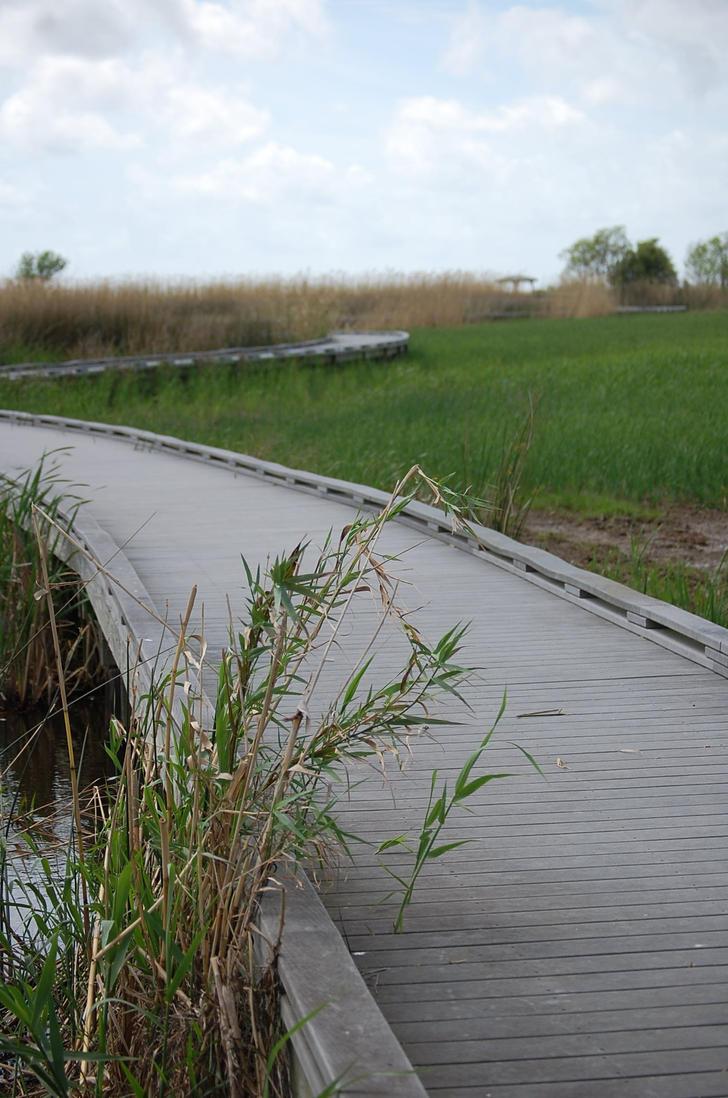 Bridge to Nowhere by smimley