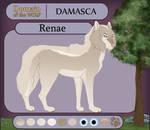 [DOTW - Application] Renae | Damasca