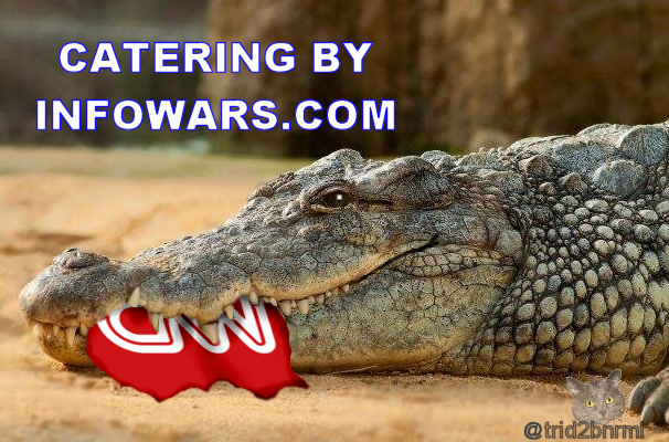 CNN crocodile meme by trid2bnrml